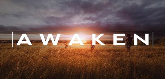2.-Awaken